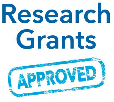 Thesis/Dissertation  Support Grant First Semester 2019 (Approved Round 1)