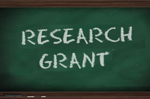 Thesis/Dissertation  Support Grant First Semester 2019 (Approved Round 2)